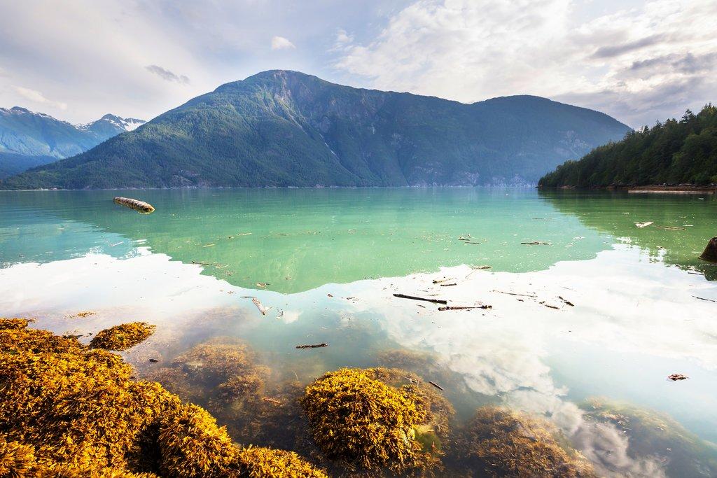 Explore the beautiful coastline around Bella Coola