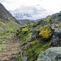 Salkantay Trek & Jungle Exploration - 11 Days