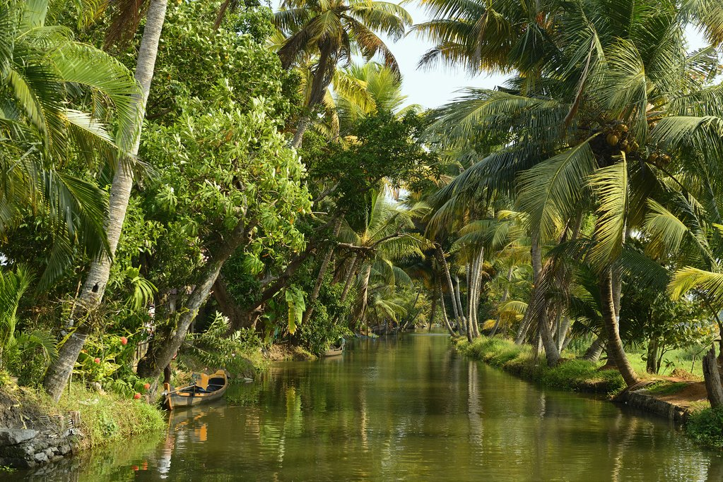 Kerala is known for its extensive network of canals