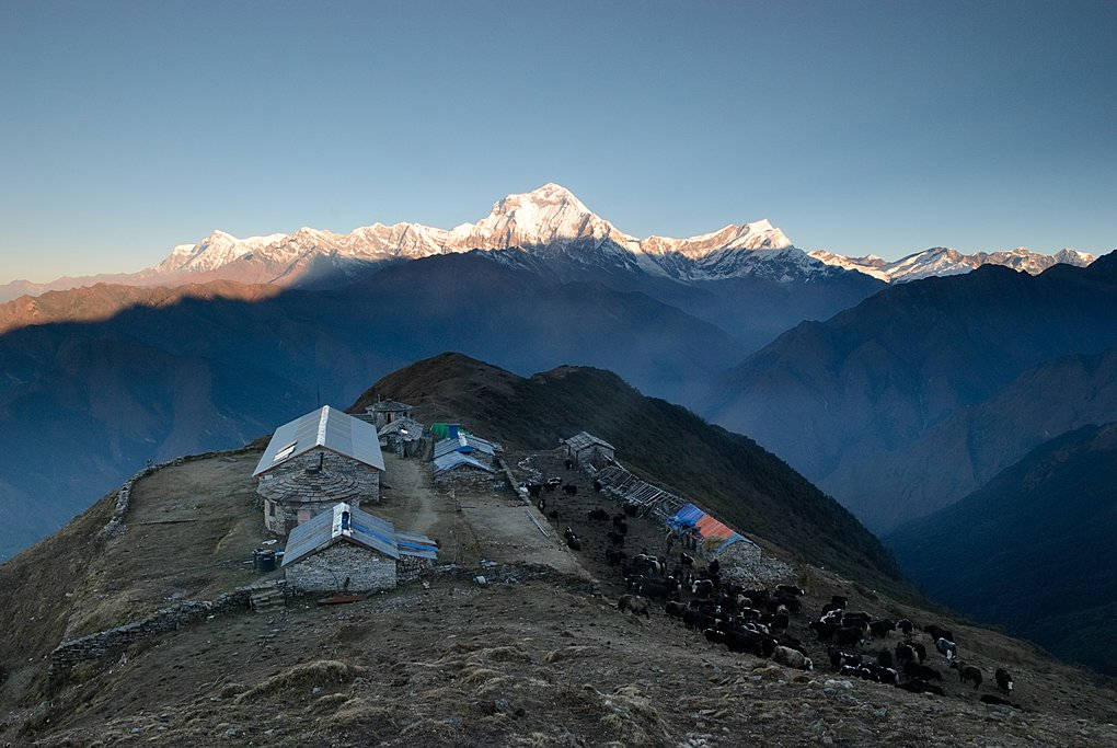 The view of Dhaulagiri from Khopra Danda