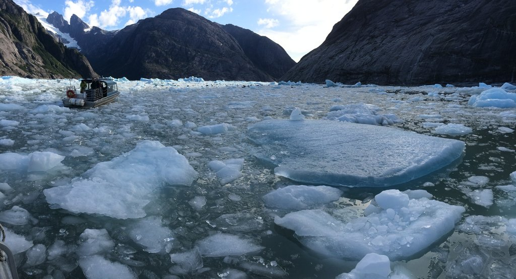 Boating between the icebergs of Leconte Bay