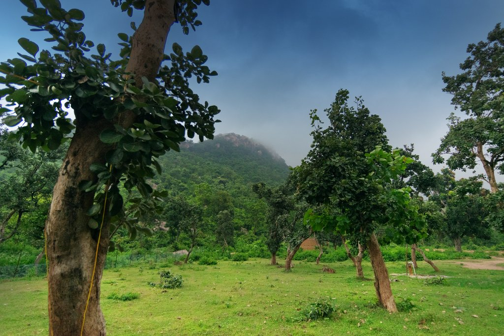 The countryside of West Bengal during the monsoon season