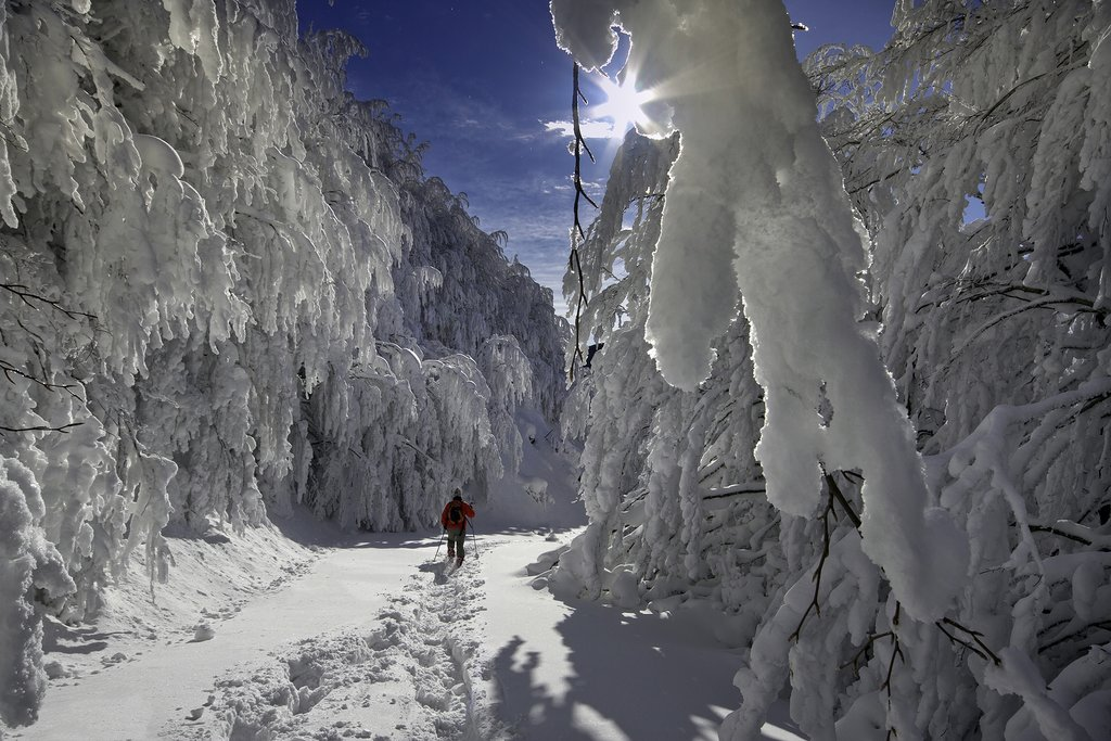 Strap on a pair of snowshoes and trek through the Casentino National Park