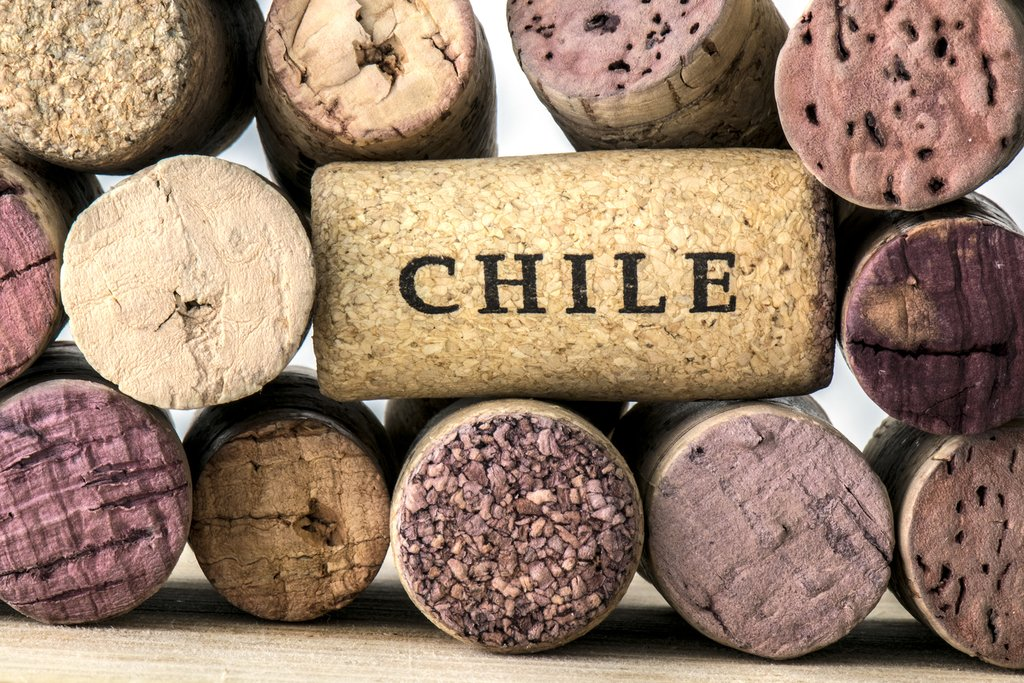 Chile is one of the world's leading wine-producers