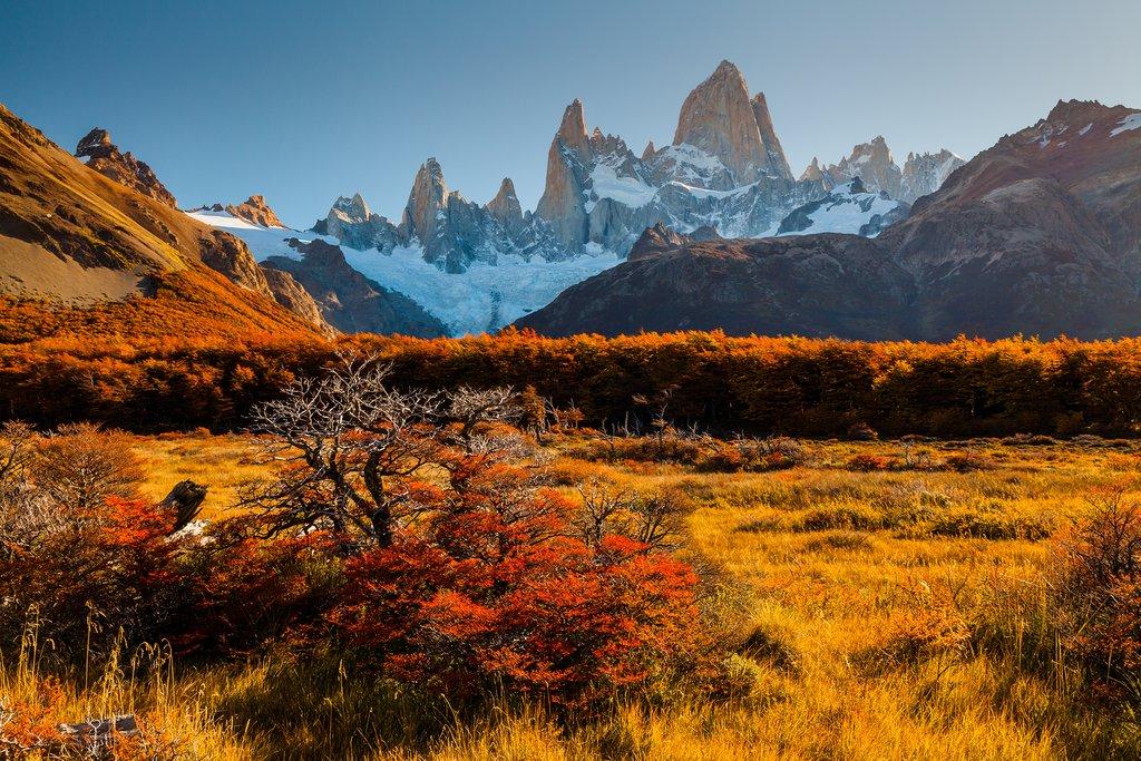 Autumn colors surround Mt. Fitz Roy