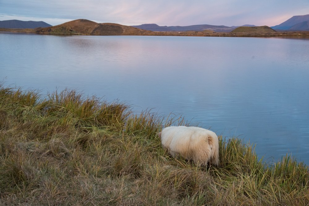 Sunset around Lake Myvatn