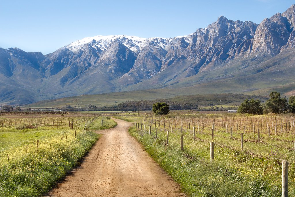 A road in the Western Cape, South Africa