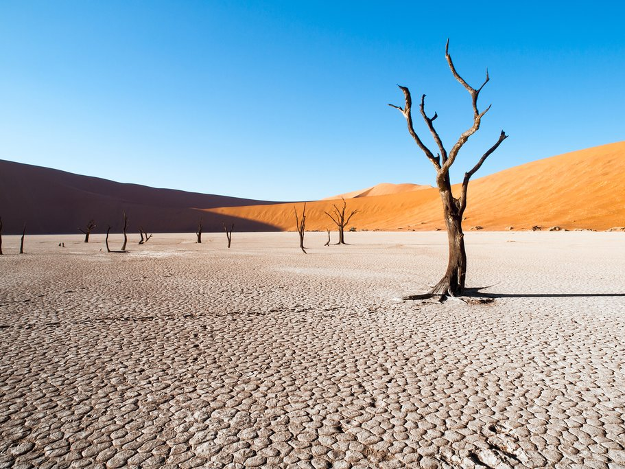 Self-Drive Namibia Exploration - 11 Days
