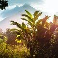 Costa Rica Adventure Tour - 12 days