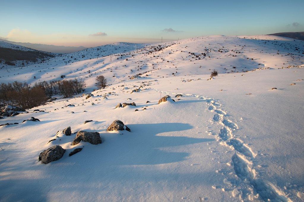 Trek the snowy terrain in the Nebrodi mountains