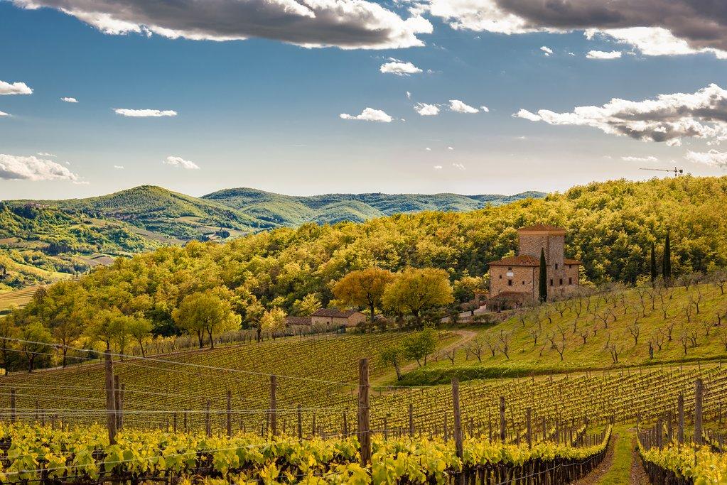 Radda in Chianti Countryside