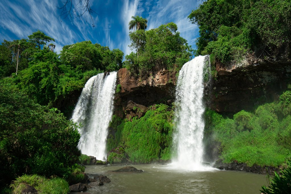 A leafy section of the Iguazú Falls