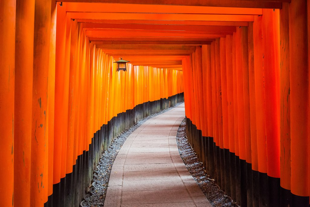 The torii gates of the Fushimi Inari Shrine in Kyoto