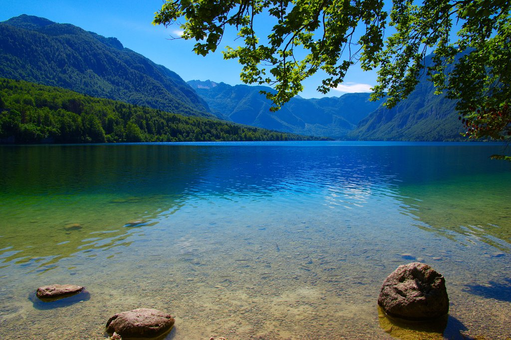 Take a dip in the pristine Lake Bohinj