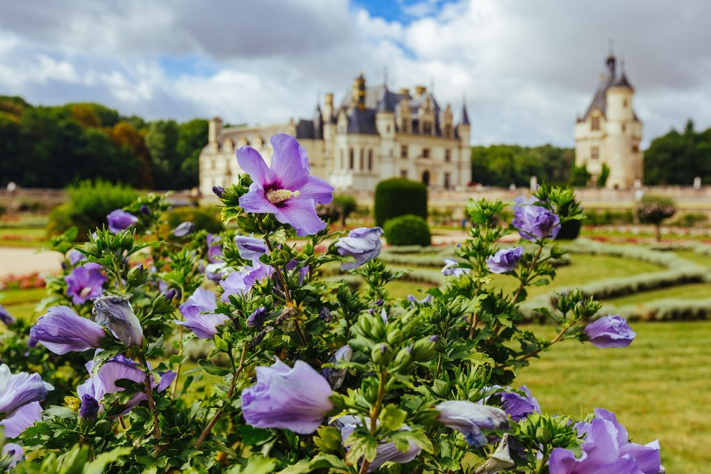 Chenonceau castle and grounds