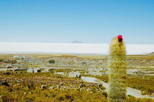 View of Salar de Uyuni from Volcán Tunupa, Bolivia