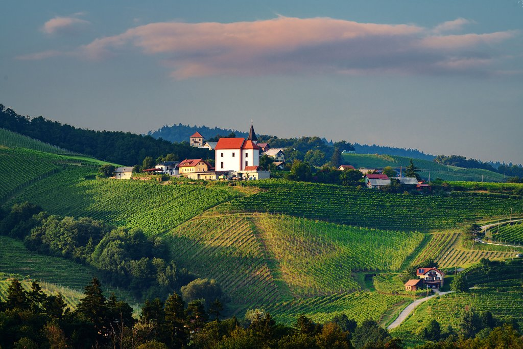 Specialist Interview: Wine Travel in Croatia, Slovenia, New Zealand, and Argentina