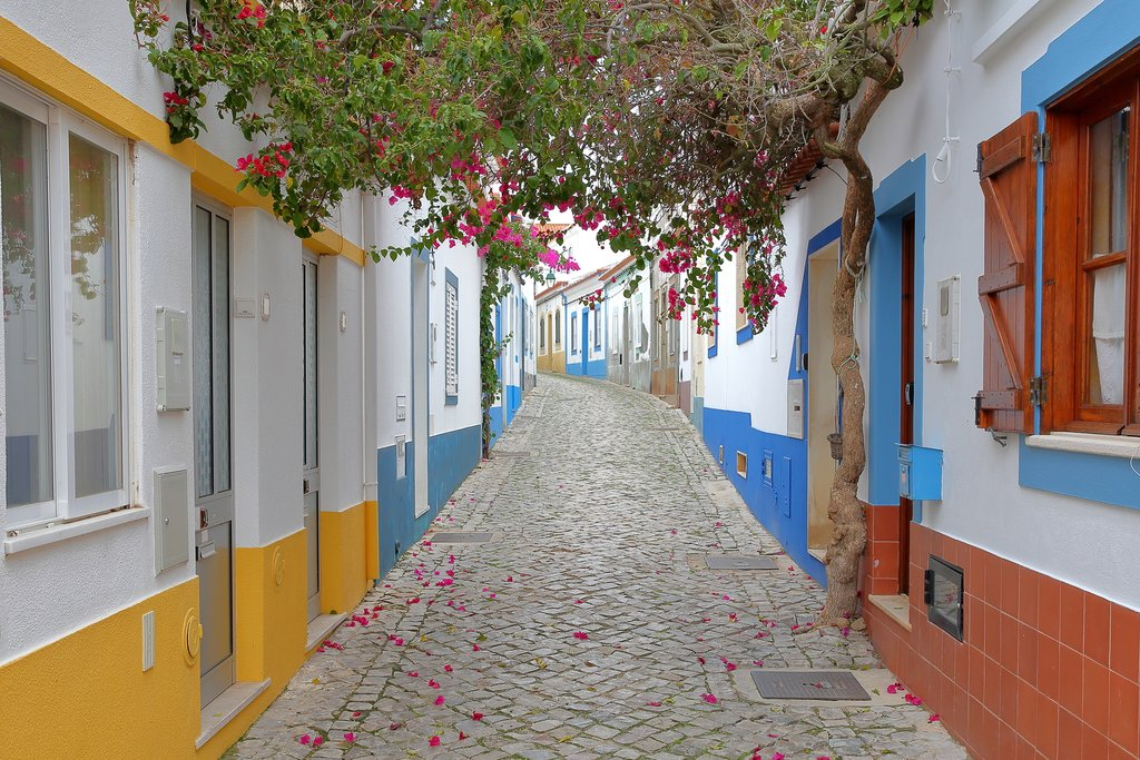 A bougainvillea-lined walkway in the Algarve