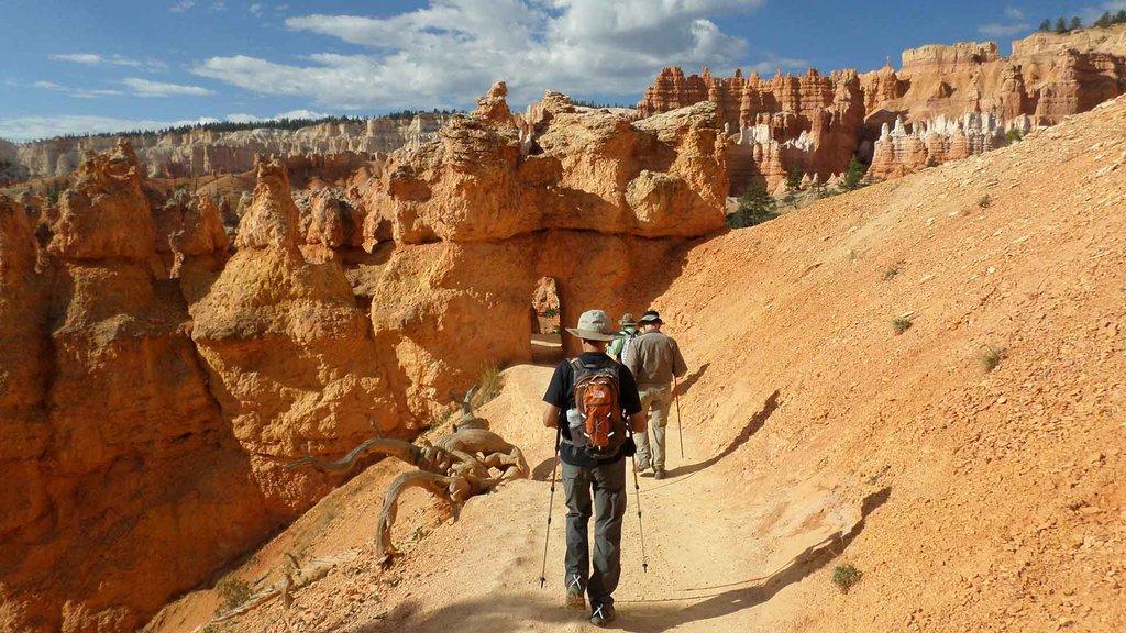 Trek through Utah's many National Parks