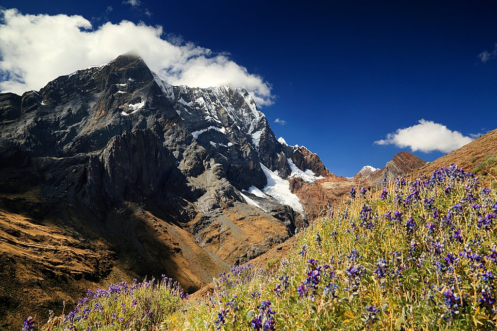 Alpine landscape in the Cordillera Blanca