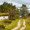 Family Travel in Norway's Countryside