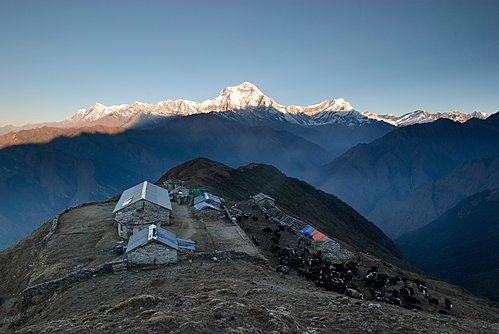 The view of Dhaulagiri from Khopra Danda