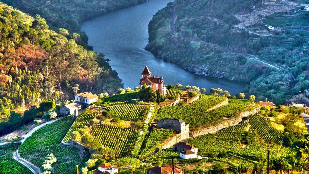 Explore Portugal: The North & Douro Valley - 10 Days | kimkim