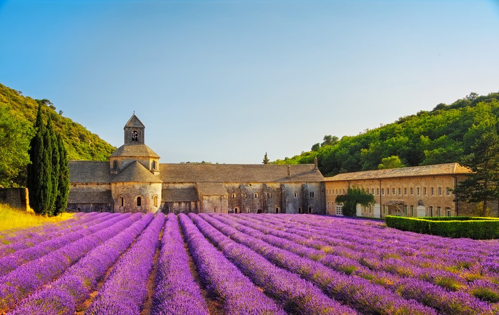 Abbey of Senanque in the Luberon