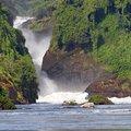 Explore the Nature and Wildlife of Uganda - 8 Days