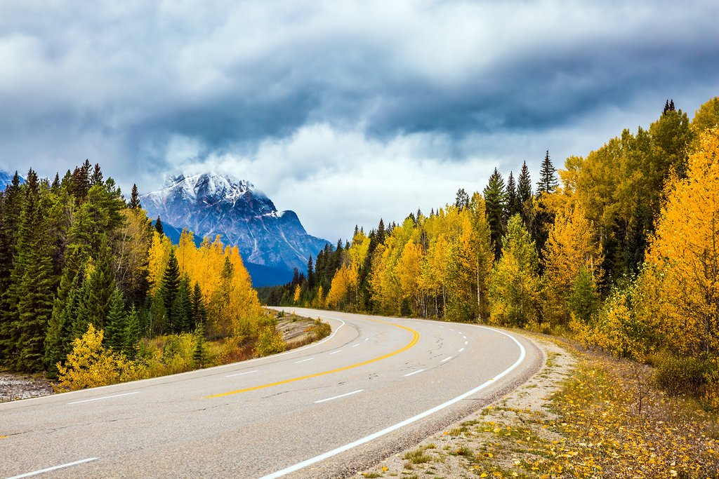 The Icefields Parkway in fall