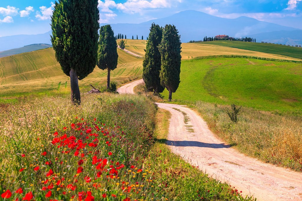 5 Best Local and Cultural Experiences in Tuscany