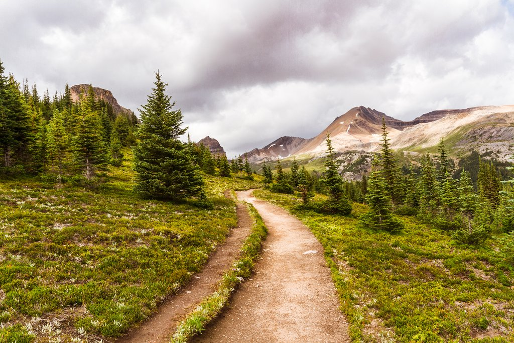 Trail to Helen Lake, Banff, National Park