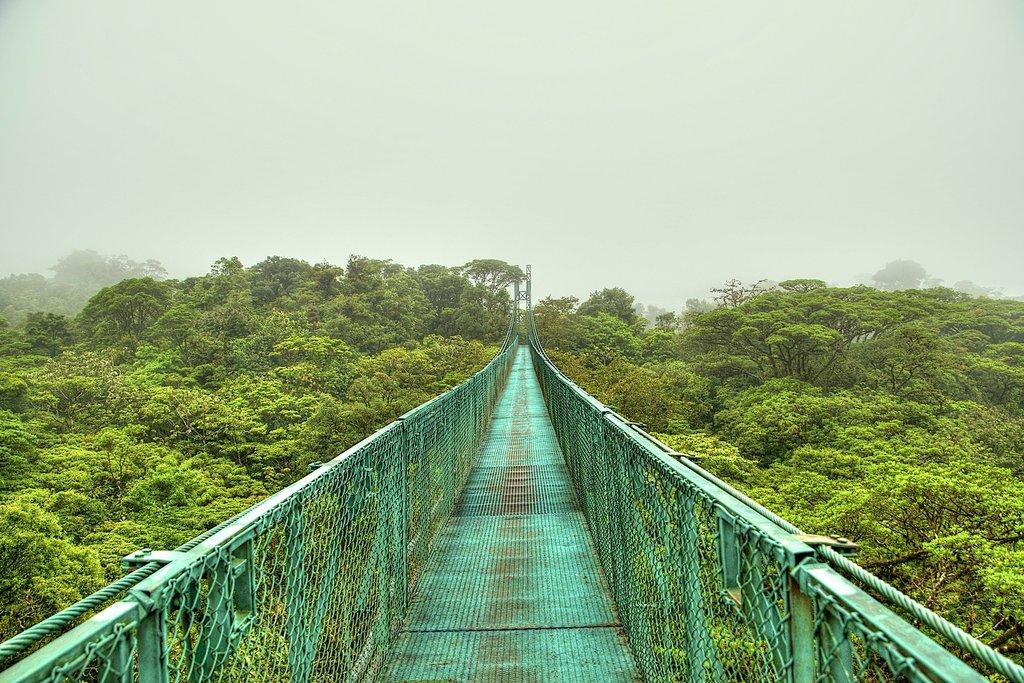 Hanging bridge in the jungle surrounding Arenal Volcano