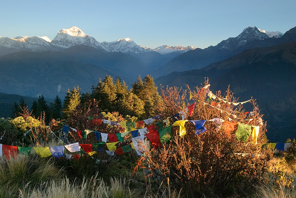 The view of Dhaulagiri from Poon Hill