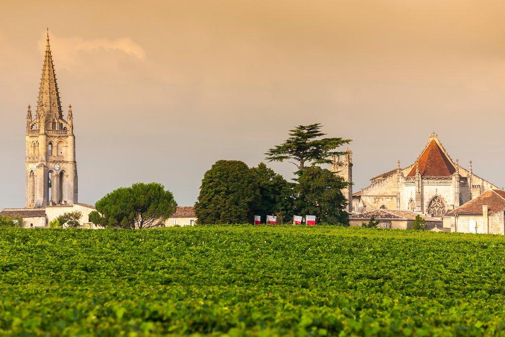 Vineyards near Bordeaux