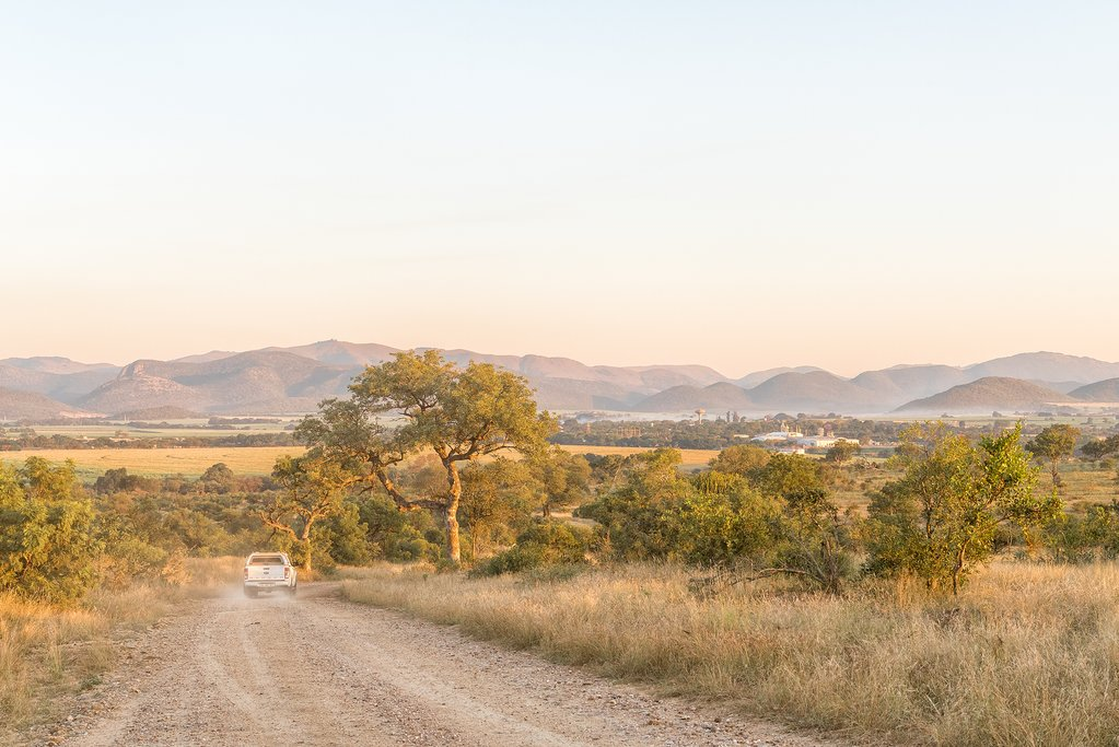 Landscape of Thornybush Game Reserve