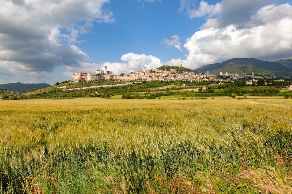 A distant view of the town of Assisi in Umbria