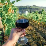 The perfect glass of Chianti