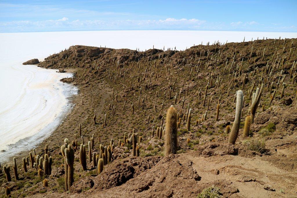 Salar de Uyuni, Incahuasi, Bolivia