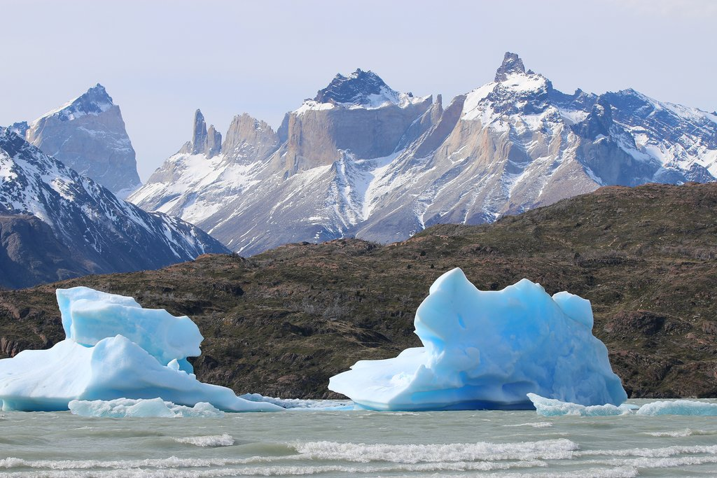 Icebergs in Grey Lake