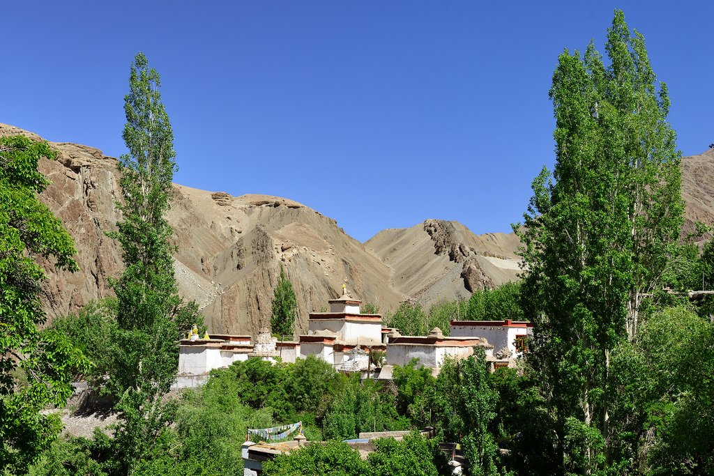 Scenery surrounding Alchi village