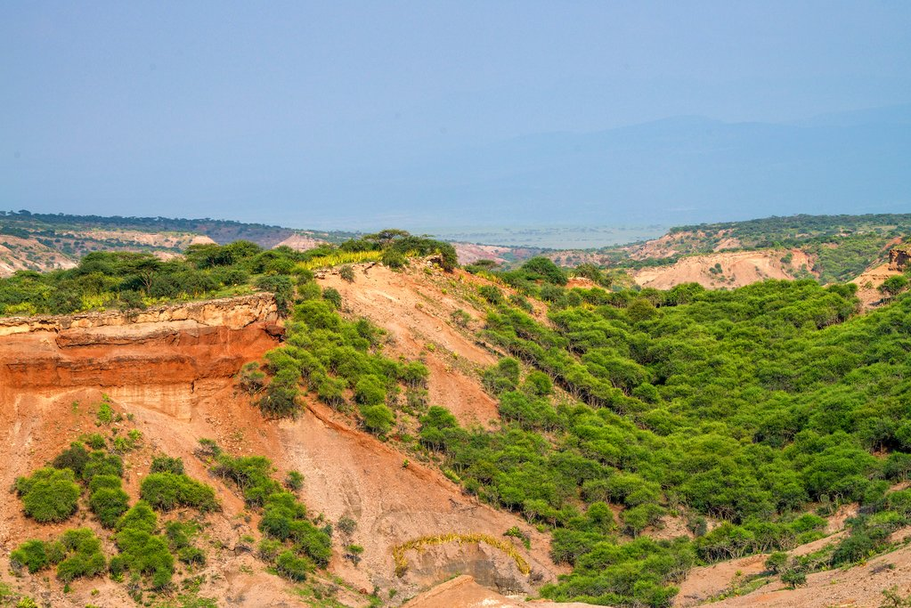 Stop by the Olduvai Gorge during today's drive