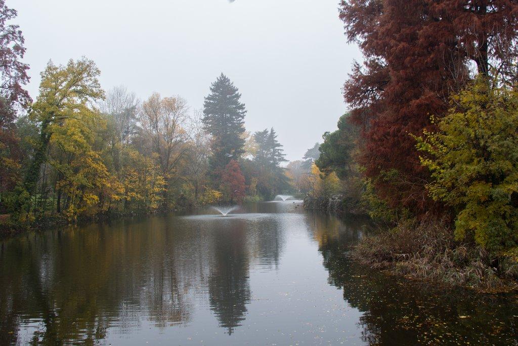 Misty Giardini Margherita in autumn