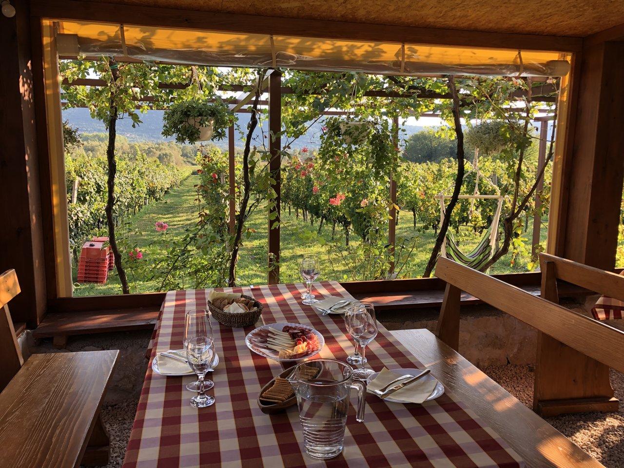 Konavle wine region, Photo taken by Kay M