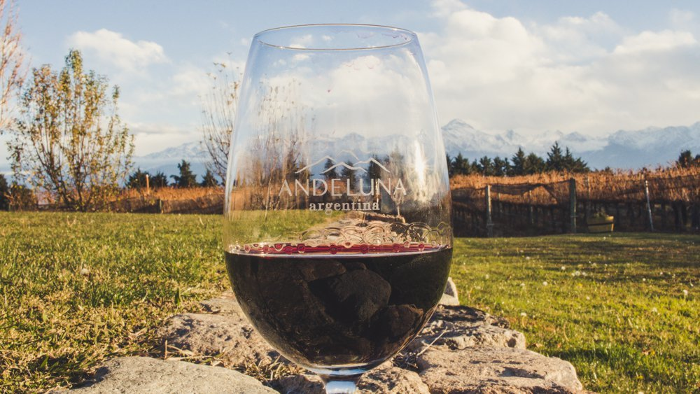 A glass of red wine in a perfect setting