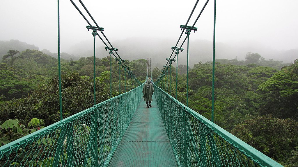 Monteverde Hanging Bridges