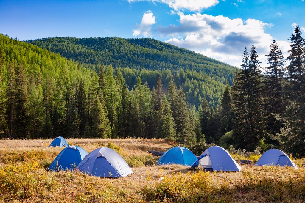 Camping in Altai National Park
