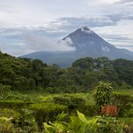 Take a nature hike around Arenal