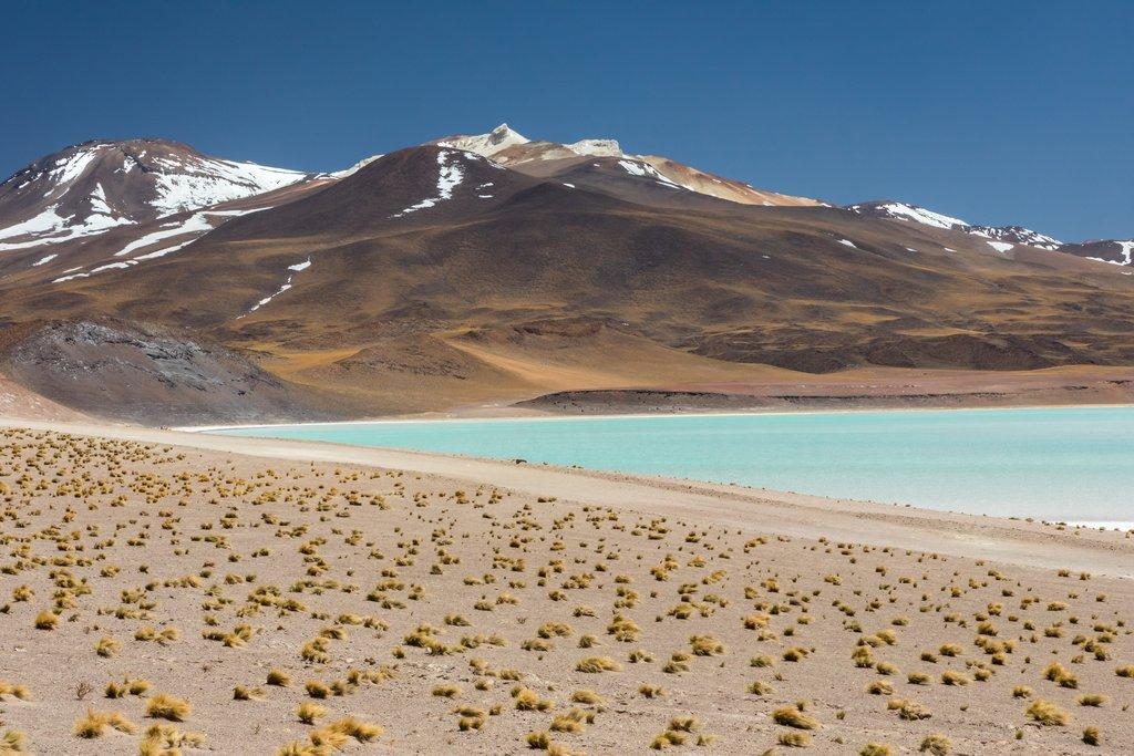Contrasting colors in Salar de Atacama