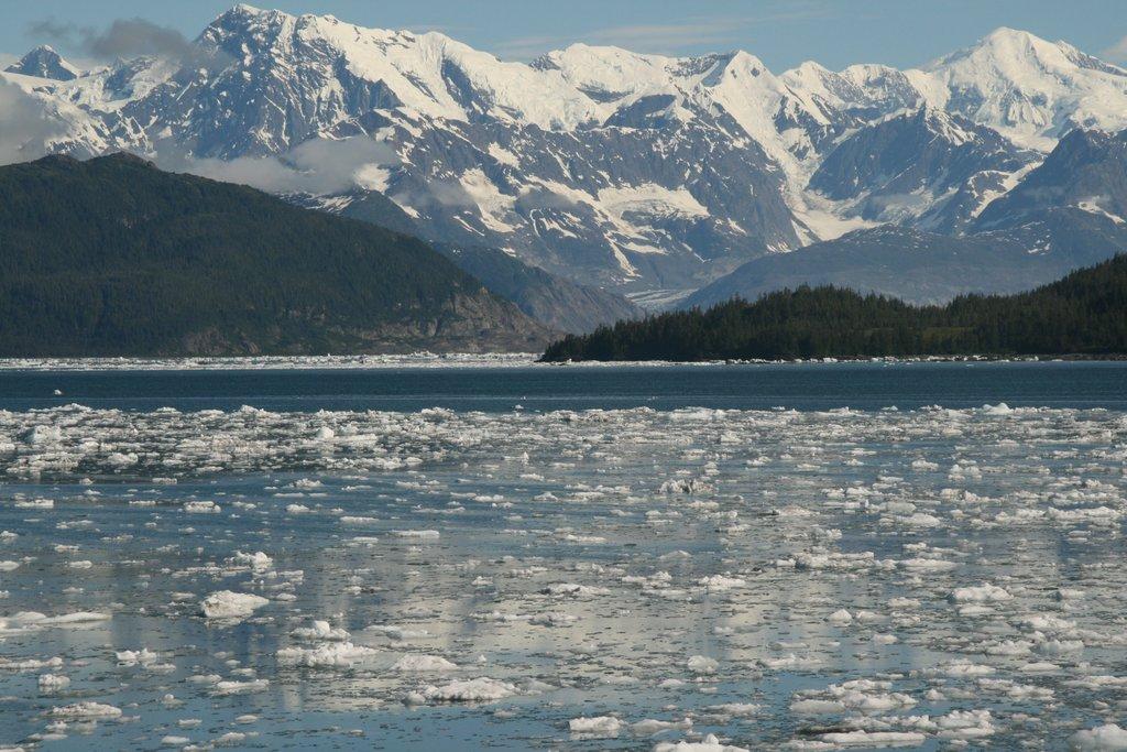 Prince William Sound near Columbia Glacier, Alaska